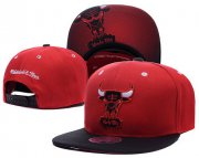 Wholesale Cheap NBA Chicago Bulls Snapback Ajustable Cap Hat LH 03-13_53