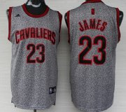 Wholesale Cheap Cleveland Cavaliers #23 LeBron James Gray Static Fashion Jersey