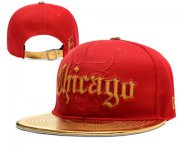 Wholesale Cheap NBA Chicago Bulls Snapback Ajustable Cap Hat YD 03-13_61