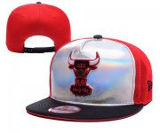 Wholesale Cheap NBA Chicago Bulls Snapback Ajustable Cap Hat YD 03-13_29