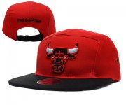 Wholesale Cheap NBA Chicago Bulls Snapback Ajustable Cap Hat YD 03-13_56