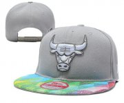 Wholesale Cheap Chicago Bulls Snapbacks YD045