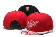 Wholesale Cheap NHL Detroit Red Wings hats 3