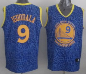 Wholesale Cheap Golden State Warriors #9 Andre Iguodala Blue Leopard Print Fashion Jersey