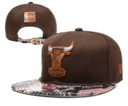 Wholesale Cheap NBA Chicago Bulls Snapback Ajustable Cap Hat YD 03-13_65