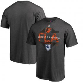 Wholesale Cheap Baltimore Orioles Majestic 2019 Spring Training Grapefruit League Winner T-Shirt Gray