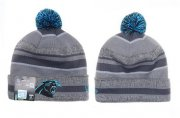 Wholesale Cheap Carolina Panthers Beanies YD009