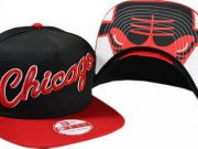 Wholesale Cheap NBA Chicago Bulls Snapback Ajustable Cap Hat XDF 03-13_06