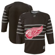 Wholesale Cheap Youth Detroit Red Wings Gray 2020 NHL All-Star Game Premier Jersey