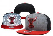 Wholesale Cheap NBA Chicago Bulls Snapback Ajustable Cap Hat YD 03-13_06