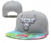 Wholesale Cheap NBA Chicago Bulls Snapback Ajustable Cap Hat YD 03-13_57