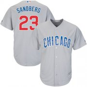 Wholesale Cheap Cubs #23 Ryne Sandberg Grey Road Stitched Youth MLB Jersey