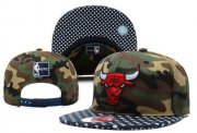 Wholesale Cheap NBA Chicago Bulls Snapback Ajustable Cap Hat YD 03-13_64