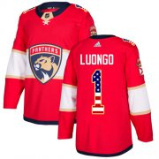 Wholesale Cheap Adidas Panthers #1 Roberto Luongo Red Home Authentic USA Flag Stitched Youth NHL Jersey
