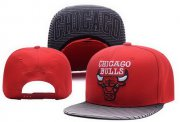 Wholesale Cheap NBA Chicago Bulls Snapback Ajustable Cap Hat XDF 03-13_08