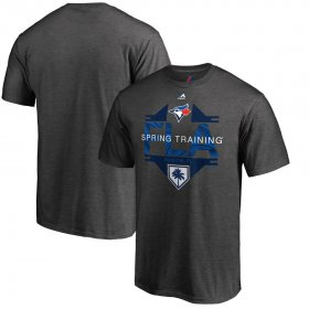 Wholesale Cheap Toronto Blue Jays Majestic 2019 Spring Training Grapefruit League Winner T-Shirt Gray