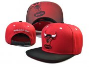 Wholesale Cheap NBA Chicago Bulls Snapback Ajustable Cap Hat LH 03-13_35