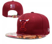 Wholesale Cheap NBA Chicago Bulls Snapback Ajustable Cap Hat YD 03-13_66