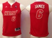 Cheap Miami Heat #6 LeBron James Red Big Color Kids Jersey