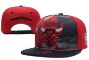 Wholesale Cheap NBA Chicago Bulls Snapback Ajustable Cap Hat XDF 03-13_43