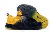 Wholesale Cheap Air Jordan Trainer 2 Flyknit Michigan Yellow Black