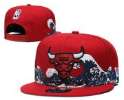 Wholesale Cheap Chicago Bulls Snapback Ajustable Cap Hat YD 1