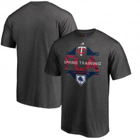 Wholesale Cheap Minnesota Twins Majestic 2019 Spring Training Grapefruit League Winner T-Shirt Gray