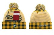 Wholesale Cheap Green Bay Packers Beanies YD004