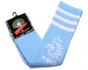 Wholesale Cheap Holland Soccer Football Sock Sky Blue