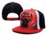 Wholesale Cheap NBA Chicago Bulls Snapback Ajustable Cap Hat DF 03-13_56