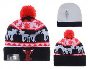 Wholesale Cheap Chicago Bulls Beanies YD011