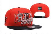 Wholesale Cheap NBA Chicago Bulls Snapback Ajustable Cap Hat DF 03-13_58