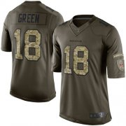 Wholesale Cheap Nike Bengals #18 A.J. Green Green Men's Stitched NFL Limited 2015 Salute to Service Jersey