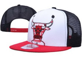 Wholesale Cheap NBA Chicago Bulls Snapback Ajustable Cap Hat XDF 03-13_02