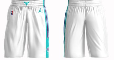 Wholesale Cheap Men's Jordan Brand White Charlotte Hornets Icon Swingman Basketball Shorts
